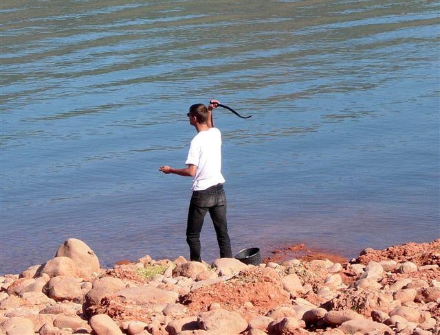 Le chien le prix dhiver pour la pêche