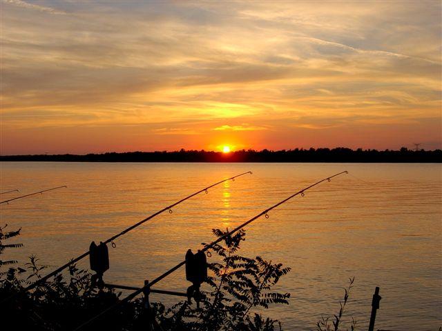 La pêche de la carpe en fleuve mériterait un livre entier tant des