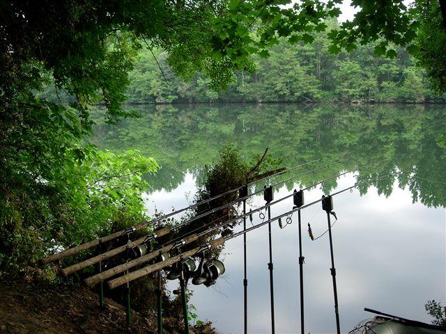 comment pecher en petite riviere