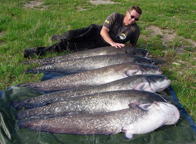 The One Fishing Toute La P 234 Che De La Carpe